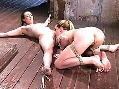 Tied Up And Crucified Casey Calvert Gets Her Cooch Ate By Restrain Bondage Romp Counterpart